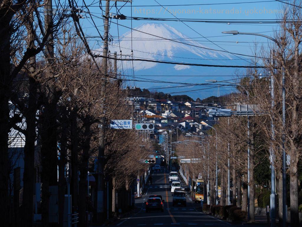 2月 富士見通り矢沢バス停から