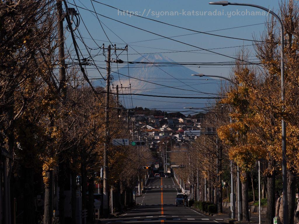 12月 富士見通り矢沢バス停から