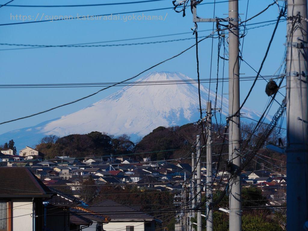 湘南桂台あさもや公園富士山