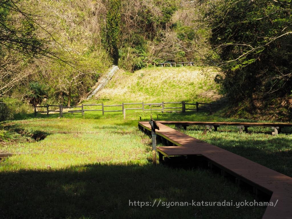 荒井沢市民の森 谷戸田の池